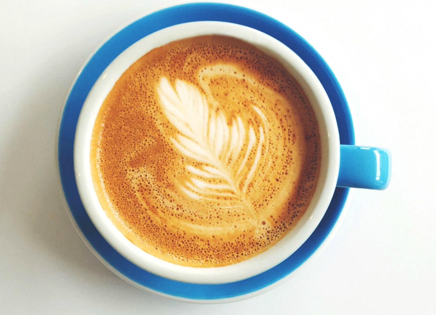 An artisan cup of coffee with leaf design in the foam